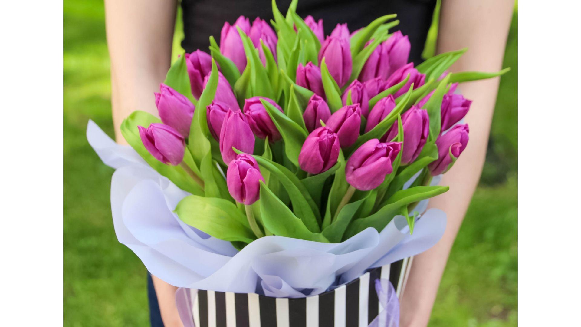 31 Тюльпан, в подарочном пакете