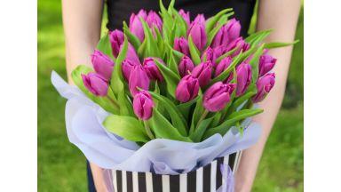 31 Тюльпан, в подарочном пакете #2