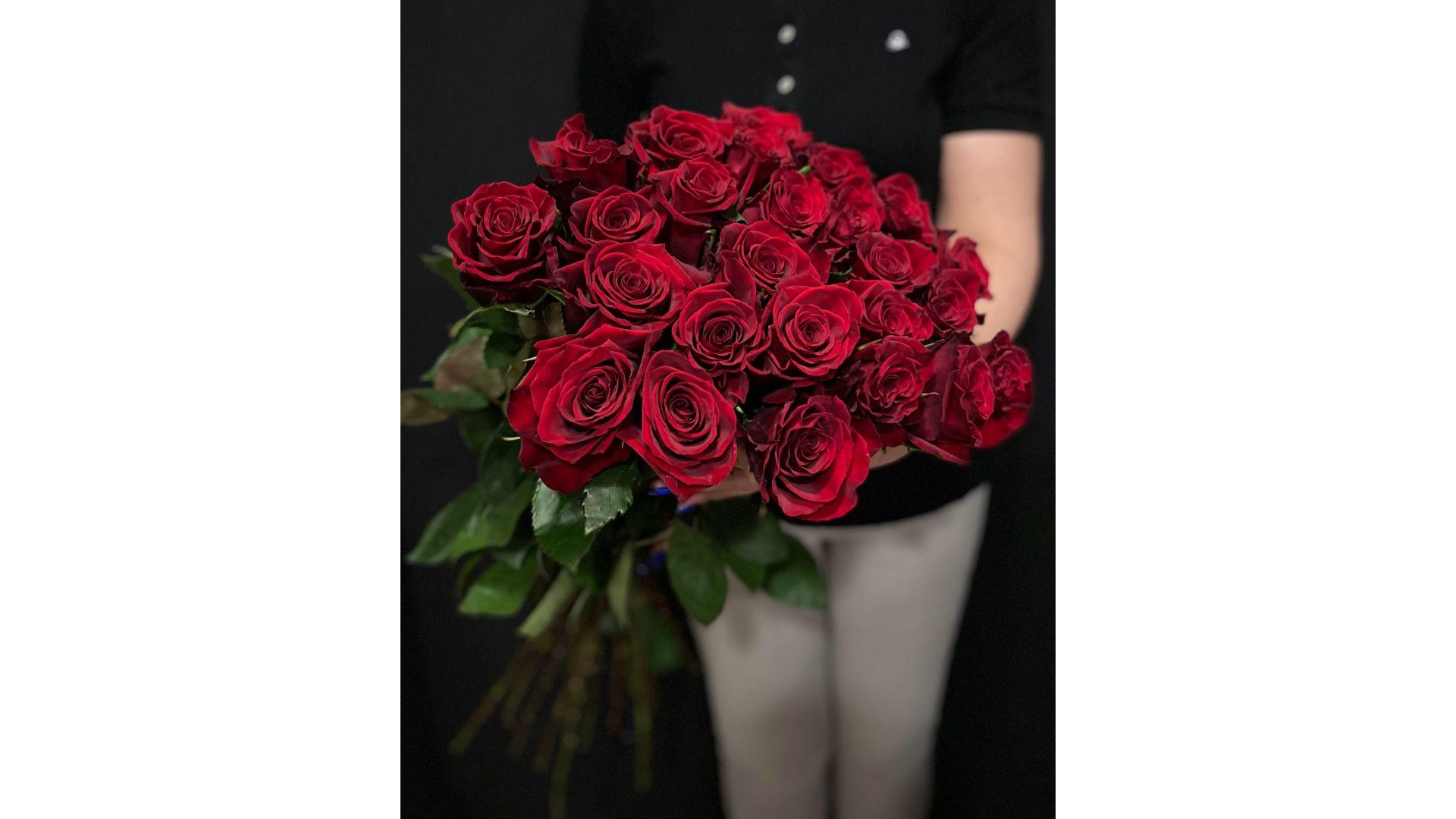 31 роза, Голландия