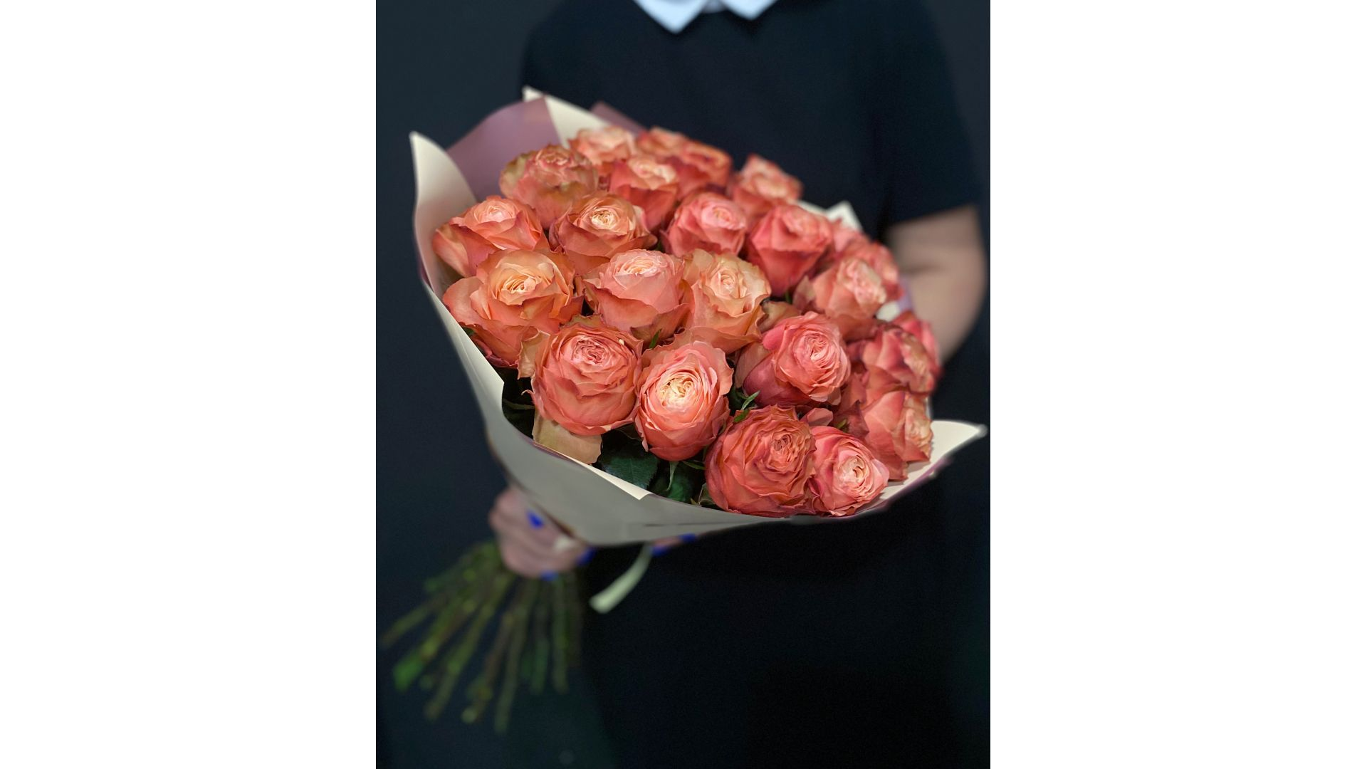 23 розы, Голландия