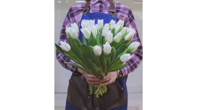 25 тюльпанов, Голландия #4