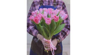 25 тюльпанов, Голландия #5
