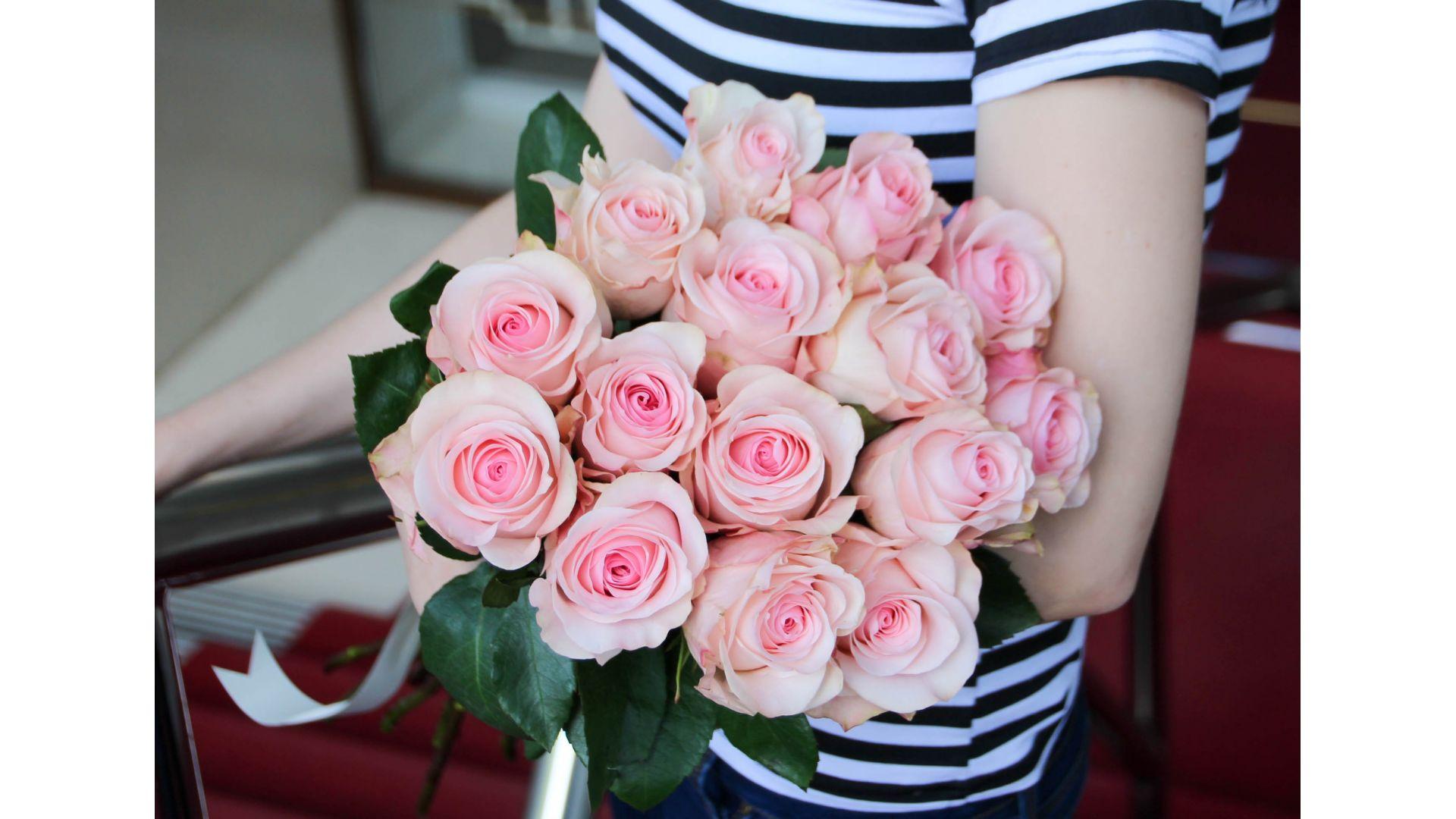 15 роз, Голландия