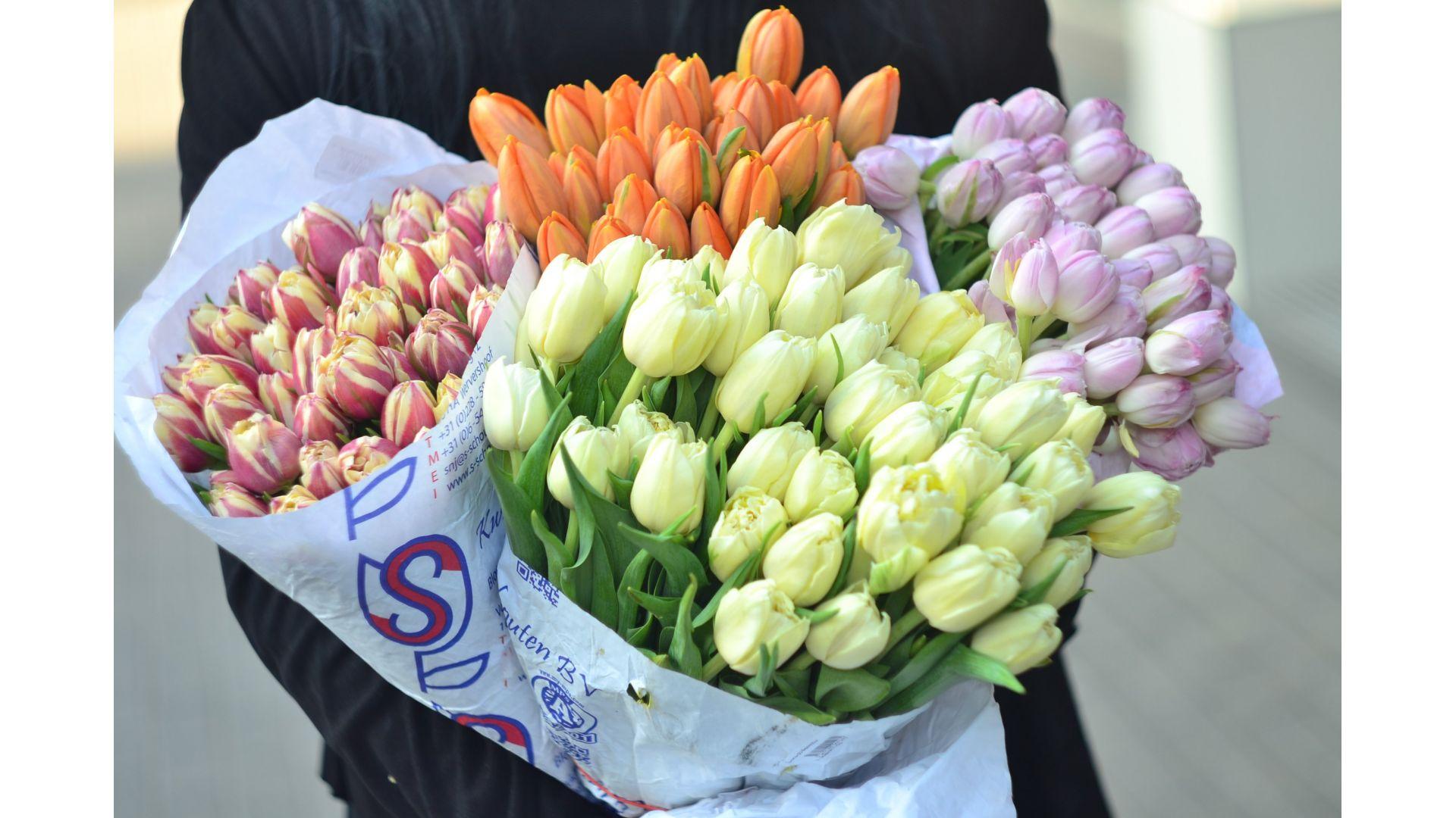 Тюльпаны в Воронеже